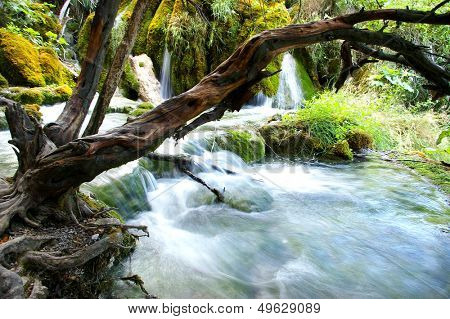 pictorial scene with waterfalls