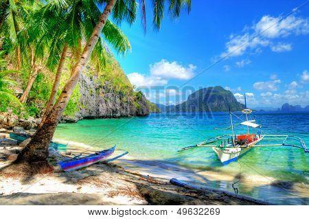 tropical escape