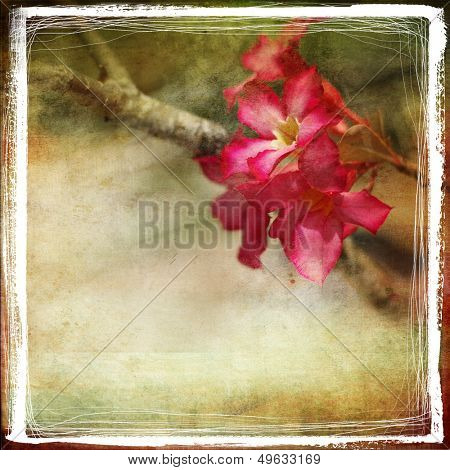 vintage style background with artistic border