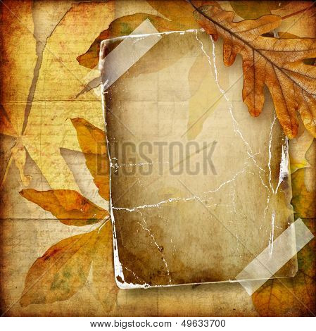 autumn background with old blank page