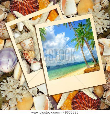 tropical memories