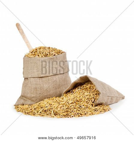Oats In A Bag Isolated On White Background