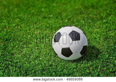 New Soccer Ball On Green Grass