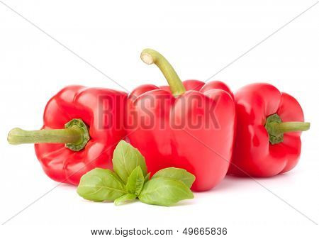 Sweet red pepper and basil leaves still life isolated on white background