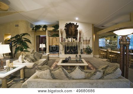 View of a spacious living room with wall mounted animal pelt