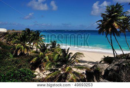 Bajan Tropical Beach