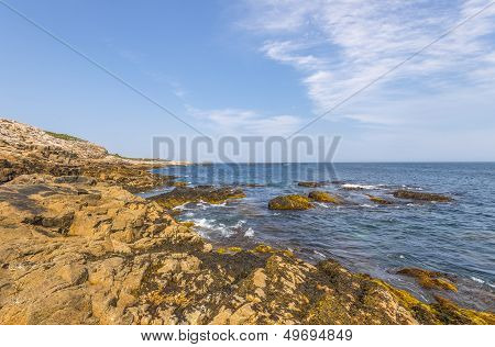 Rocky Shore At Low Tide