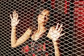 stock photo of smuggling  - Young woman behind a metal fence - JPG