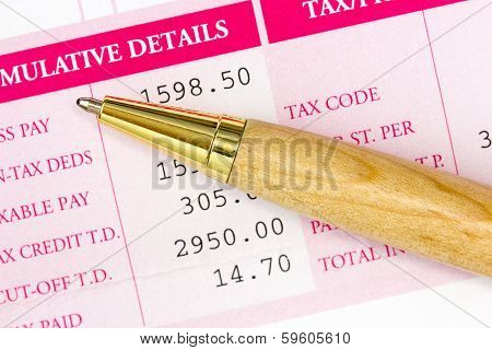 Pen With Statement Of Salary Details