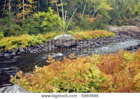Fall Colors Along River