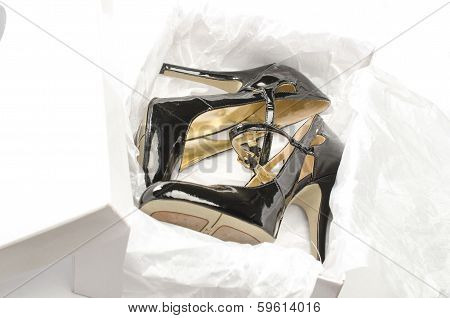 Shoes in the Box