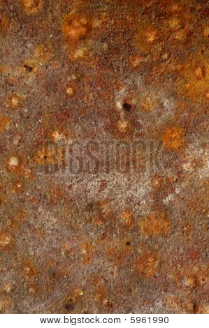 old  blight metal plate