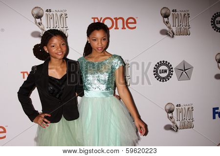 LOS ANGELES - FEB 8:  Halle Bailey, Chloe Bailey at the 2014 NAACP Image Awards Nominees Luncheon at Loews Hollywood Hotel on February 8, 2014 in Los Angeles, CA