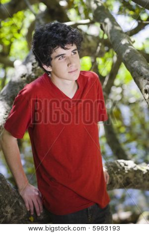 Portrait Of Teen Boy In Woods