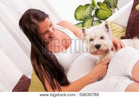 Happy pregnant woman with west highland white terrier relaxing on the sofa