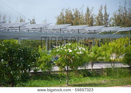 Solar Cell On Roof At  Park.