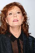 LOS ANGELES - FEB 10:  Susan Sarandon at the AARP