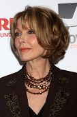 LOS ANGELES - FEB 10:  Susan Blakely at the AARP