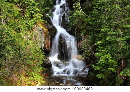 Water falls in Mount Rainier national park from glaciers