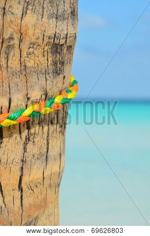 Color Ful Rope