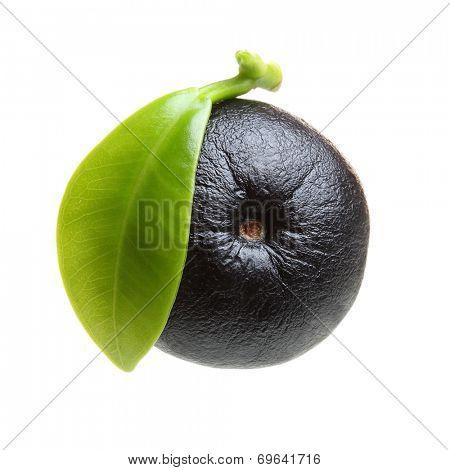 Amazon acai berry fruit with leaf isolated on white background.