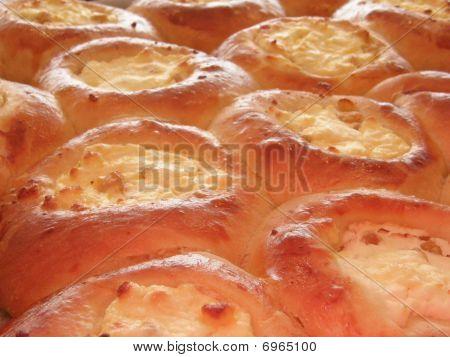 Freshly baked curd tarts