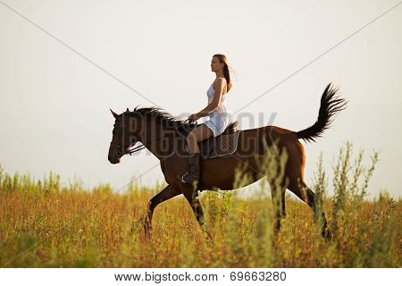Young Woman Riding A Brown Horse