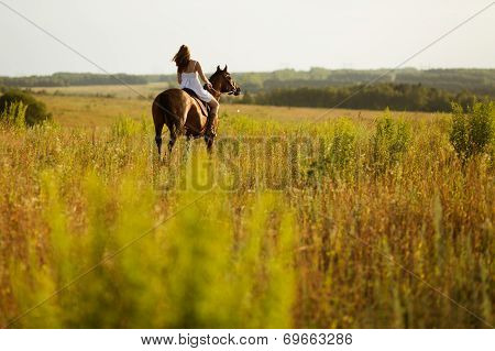 Girl Jump On Field On A Horse