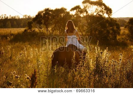 Woman In A Dress Riding On An Adult Horse