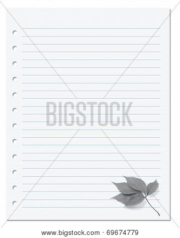 Notebook Paper With Virginia Creeper Leaf