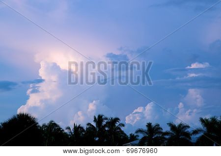 Various Cloud Formations Over Palm Trees At Sunset