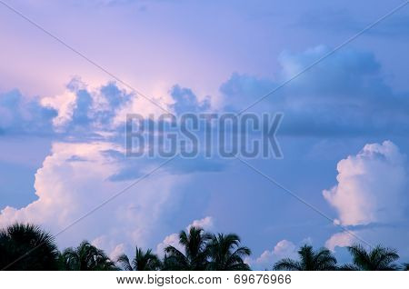 Various Cloud Formations Over Palm Trees