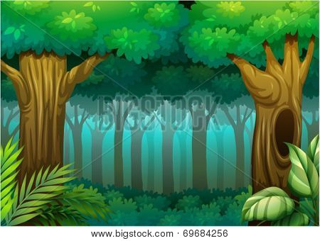 Illustration of a deep forest scene