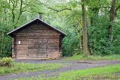 foto of log cabin  - Image of an old wooden log cabin in the middle of a forest - JPG