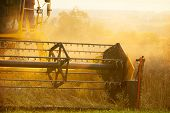 stock photo of threshing  - Combiner harvesting wheat field in detail - JPG