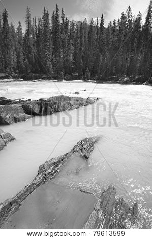 Canadian Landscape With River And Forest. British Columbia. Canada