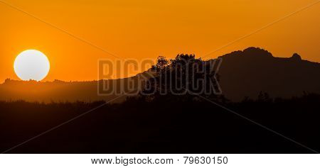 Sunset over mountain with orange sky and tree profile