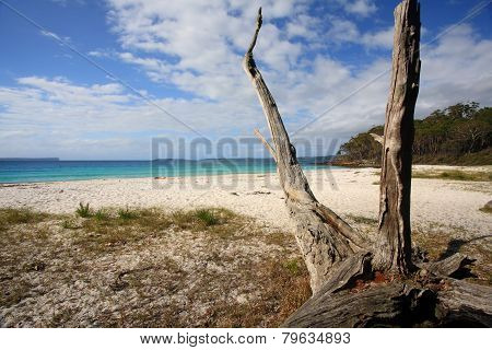 Greenfields Beach Jervis Bay Australia