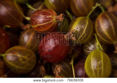 Gooseberries Background