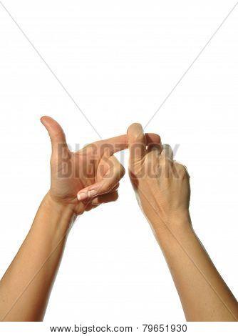 Mudra Hands