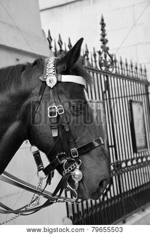 Horse Guards. Whitehall