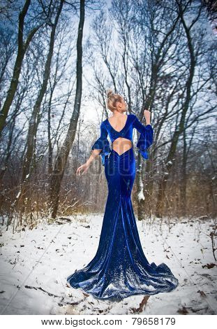 Back side view of lady in long blue dress posing in winter scenery, royal look. Fashionable blonde