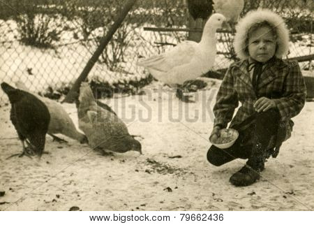 GERMANY, CIRCA THIRTIES: Vintage photo of little girl feeding poultry in winter