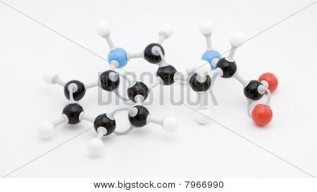 Tryptophan Amino Acid Molecule