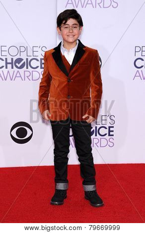 LOS ANGELES - JAN 07:  Blake Garrett Rosenthal arrives to the People's Choice Awards 2014  on January 7, 2015 in Los Angeles, CA