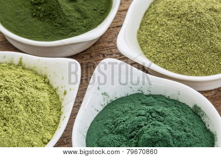 four healthy green dietary supplement powders (spirulina, chlorella, wheatgrass and moringa leaf) in white bowls