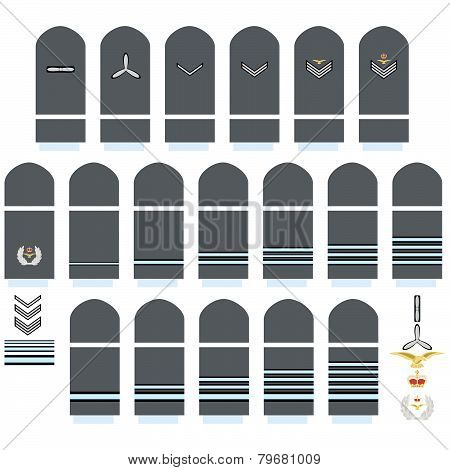 Royal Air Force insignia