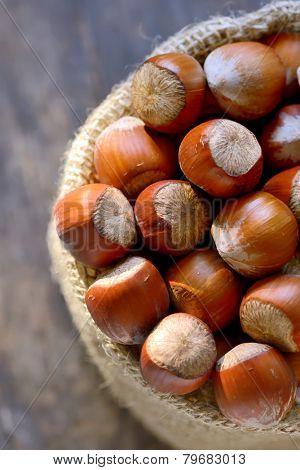 Ripe hazelnuts in burlap bags