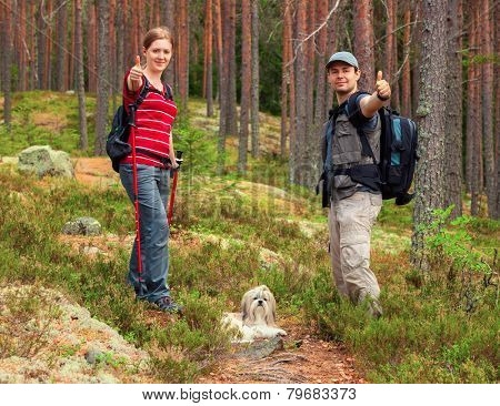 Young tourists couple with dog showing thumbs up on forest background.