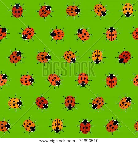 Seamless Pattern with Orange Ladybugs. Seamless vector.